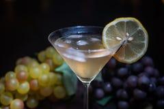 一杯马蒂尼鸡尾酒用柠檬 免版税库存图片