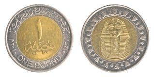 一枚埃及磅硬币 库存图片