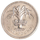 一枚英磅硬币 免版税库存照片