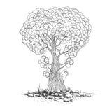 一树剪影  向量 图库摄影