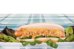 一根新鲜的热狗的Sideview用香肠,烤葱黄瓜 免版税库存图片