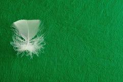 一根白色蓬松羽毛 免版税库存图片