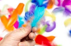 一根色的羽毛在白色背景的手上 库存图片
