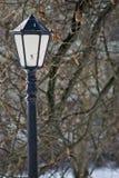 一根路灯柱在公园 库存图片