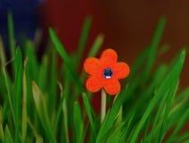 一棵人造花的一张好和五颜六色的图片 免版税库存图片