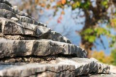 一棵传统石房子和五颜六色的树的屋顶的看法在秋天颜色在背景,伊斯特拉半岛地区,克罗地亚中 库存图片