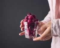 一棵冷冻樱桃在手中 图库摄影