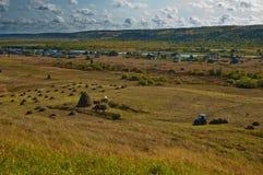 一棵割晒牧草在俄国村庄 图库摄影