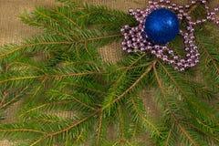 一棵圣诞树的分支与诗歌选和蓝色球的 免版税库存图片