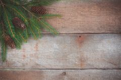 一棵圣诞树的分支与锥体的在土气木背景 库存图片