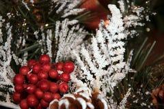 一棵圣诞树的红色莓果和分支在雪下的 免版税库存照片