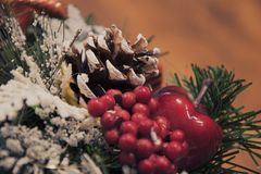 一棵圣诞树的锥体和分支在雪下的,红色莓果 库存图片