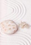 一棵多斑点的岩石和干海草在美好的沙子在禅宗庭院里 库存图片