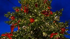 一棵大圣诞树的特写镜头外面在晚上 免版税图库摄影