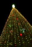 一棵大圣诞树 免版税库存照片