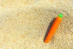 一棵小的红萝卜 库存照片