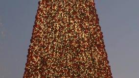 一棵巨大的圣诞树的前面转折在晚上 股票录像