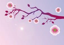 一棵开花的树的美好的例证 库存图片