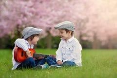 一棵开花的樱桃树的两个可爱的白种人男孩从事园艺, pl 库存图片
