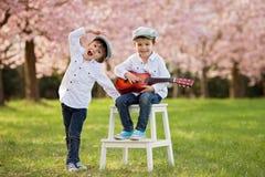 一棵开花的樱桃树的两个可爱的白种人男孩从事园艺, pl 免版税库存图片