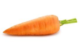 一棵成熟红萝卜 库存照片