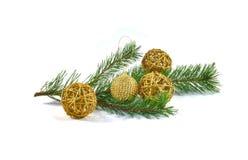 一棵杉木的分支与圣诞树装饰的 库存照片