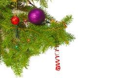 一棵杉树的分支与圣诞节装饰品的 库存照片