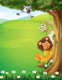 一棵树在与动物掩藏的小山顶部 免版税库存图片