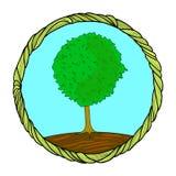 在一个圆的框架的树 库存例证