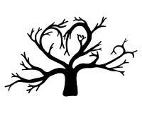 一棵树的剪影以心脏的形式 背景查出的白色 免版税图库摄影