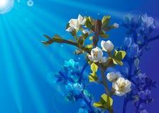 一棵树的开花的分支与白花的从三角 与太阳光芒的春日  免版税库存照片