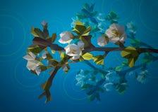 一棵树的开花的分支与白花的从三角 日森林春天郊区结构 库存照片