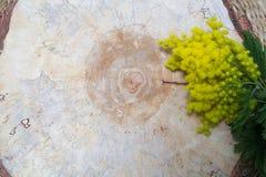 一棵树的木纹理与黄色花的 免版税库存照片
