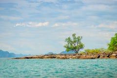 一棵树的看法在一热带uninhab的一个离开的多岩石的海滩的 免版税库存图片