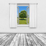 一棵树的看法通过一个开窗口 免版税库存照片