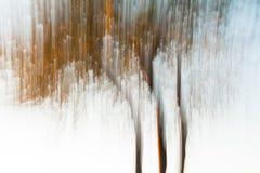 一棵树的艺术性的摄影使用绘画作用的,由长的快门速度 库存例证