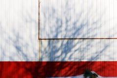 一棵树的阴影在红色和白色墙壁冬天 图库摄影