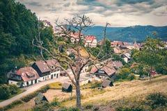 一棵死的树在山村 德国 黑森林定了调子 免版税库存图片