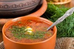 从一棵甜菜和圆白菜的汤用蕃茄 免版税库存图片