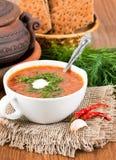 从一棵甜菜和圆白菜的汤用蕃茄 库存照片