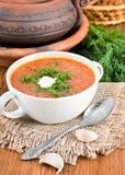 从一棵甜菜和圆白菜的汤用西红柿酱 库存照片