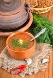 从一棵甜菜和圆白菜的汤用西红柿酱 库存图片