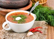 从一棵甜菜的汤用西红柿酱。 免版税库存照片
