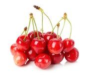 一棵红色樱桃的极少数在白色背景的 免版税库存照片