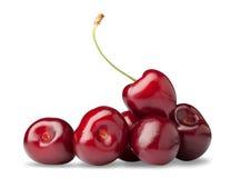 一棵红色樱桃的极少数 免版税库存照片