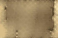 一棵纸莎草的被刻记的纹理与纸样式的 库存例证