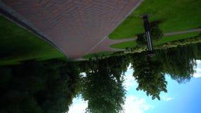 一棵被铺的路和绿色树的旋转的看法 影视素材