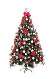 一棵装饰的圣诞树的演播室射击 库存图片