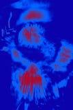 一棵酢浆草植物的花零件抽象微写器  免版税图库摄影