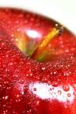 一棵酥脆红色美味苹果的宏指令 图库摄影